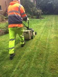 Garden Maintenance Newton Mearns