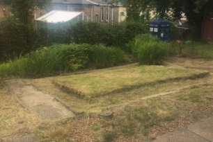 Garden Clearance Shawlands 1