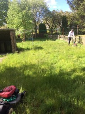 grass cutting Rutherglen 2