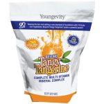 Beyond Tangy Tangerine - Gusset Bag