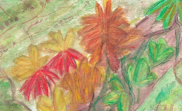 Epiphyte art image for slider
