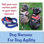 Dog Harness For Agility