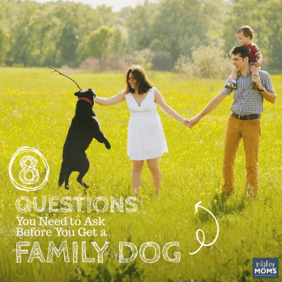 8 Questions You Need to Ask Before You Get a Family Dog