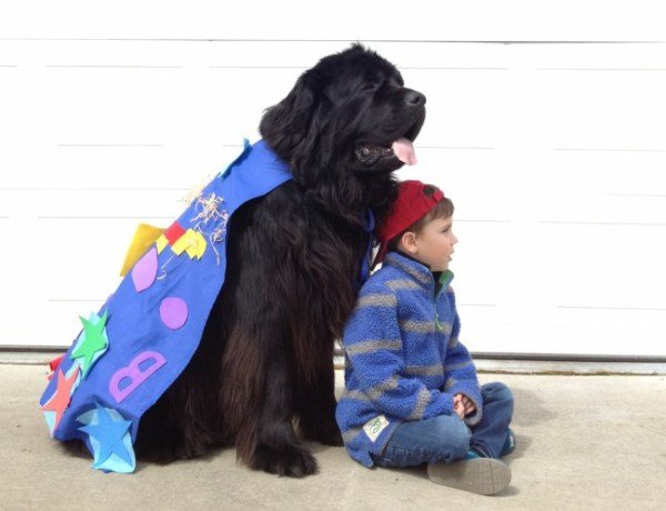 foto divertenti: bambino e il suo migliore amico cane