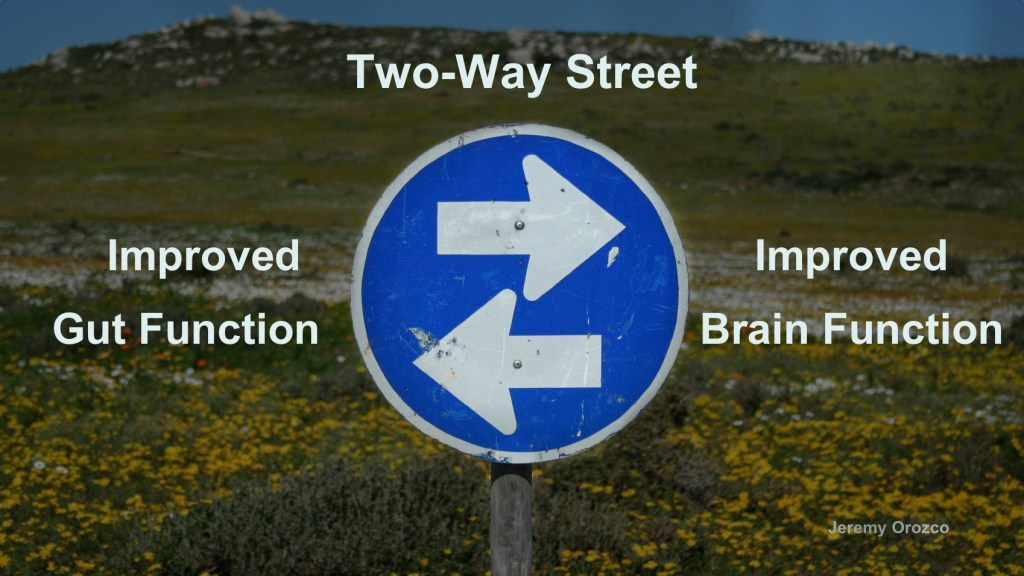 two-way street gut function brain function