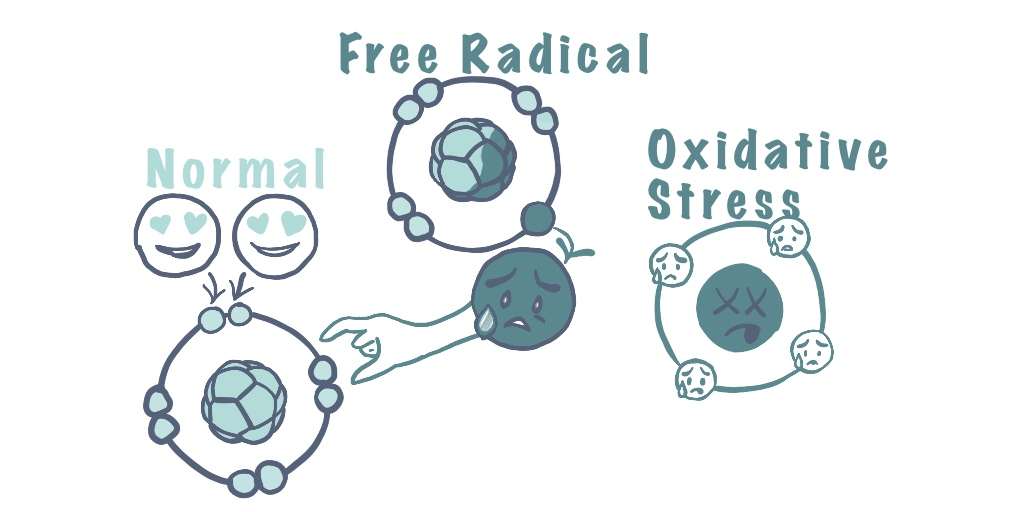 Free radical and oxidative stress
