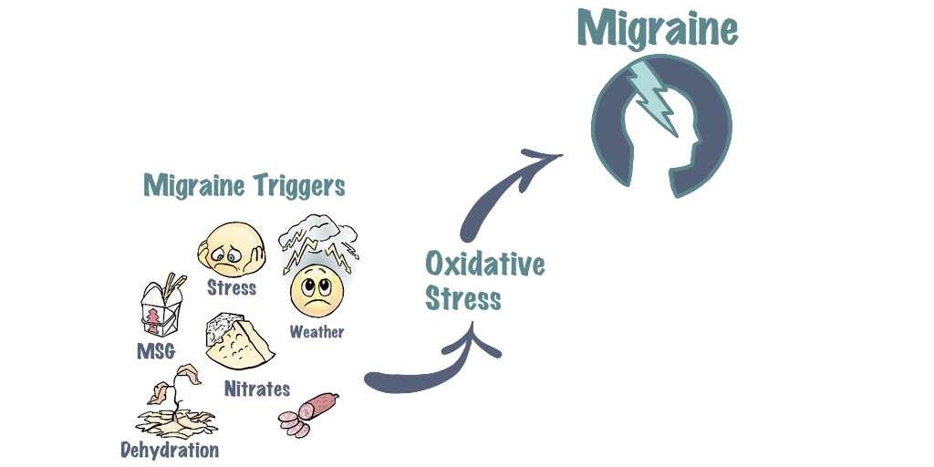 Migraine triggers, oxidative stress and migraine