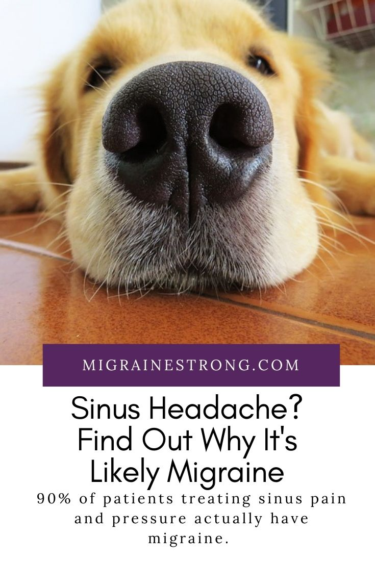 Sinus Headache? Find Out Why It\'s Likely Migraine