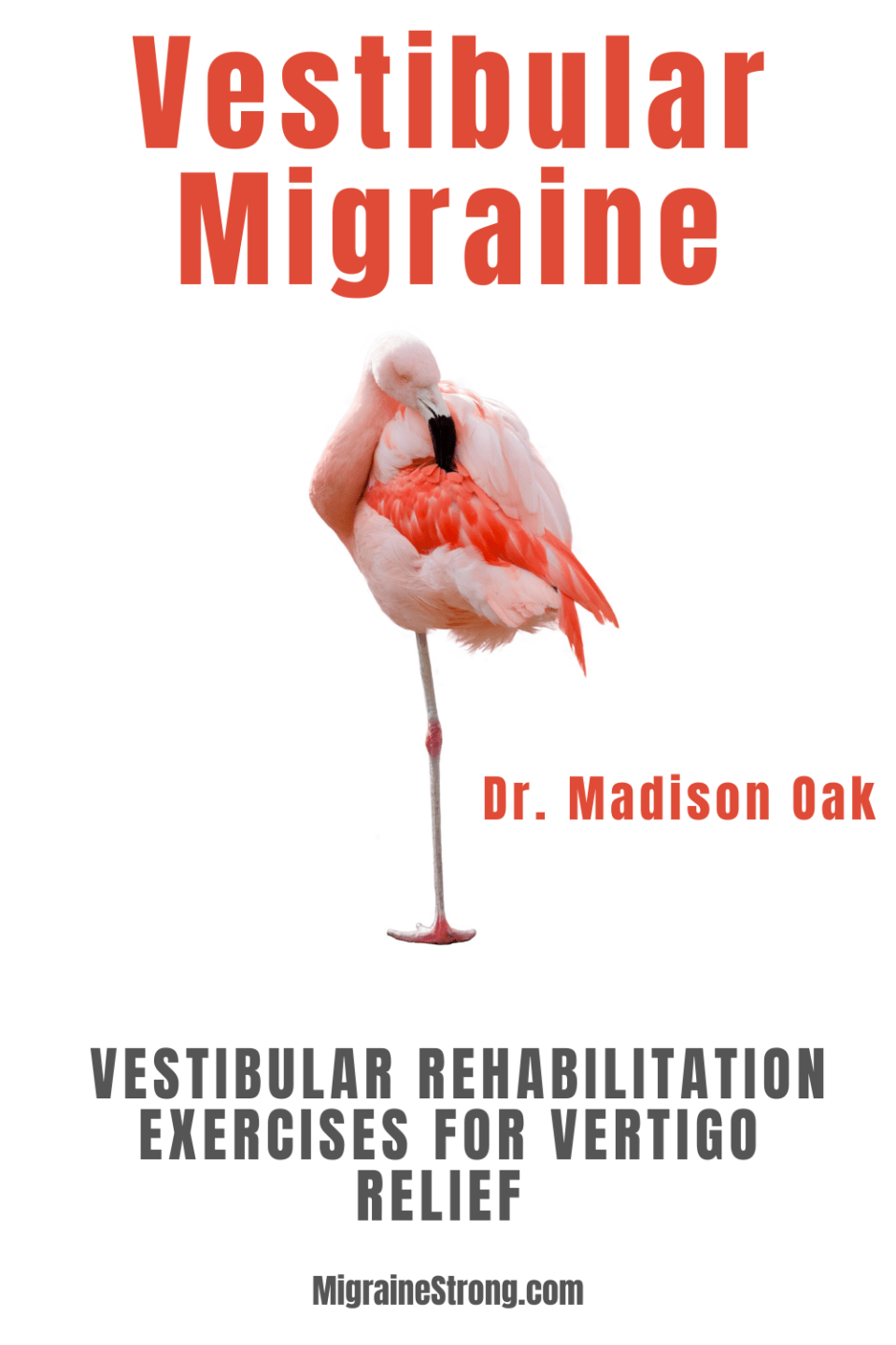 Vestibular Rehabilitation Therapy- Tips From a Vestibular Migraine Rehabilitation Therapist to Help You Overcome Dizziness Now