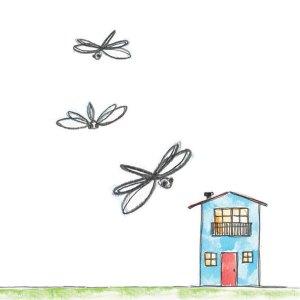 Migrate Design Illustration Dragonfly