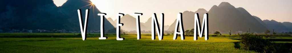 Vietnam Expat Interview