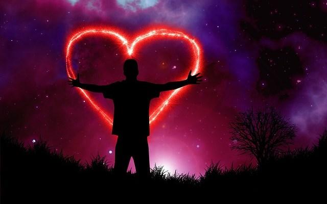 heart 2671879 640 - El Cerebro del Corazón y su Coherencia