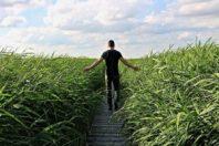 high grass 1504280 640 300x200 - El Ejercicio Físico en beneficio de una vida Plena