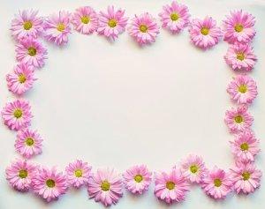 Marco flores - Marco flores