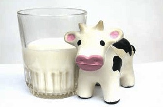 Dieta sin proteina de leche de vaca es mala