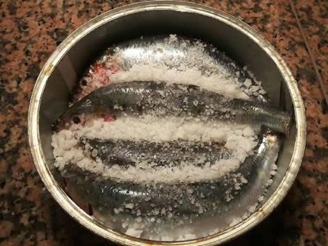Sardinas marinadas en salazón