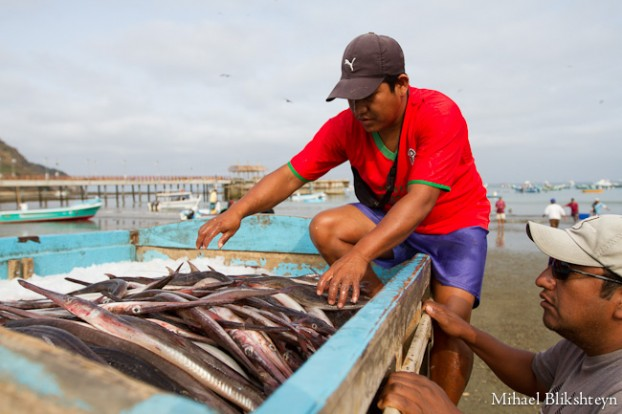 Puerto Lopez fishermen offloading and selling catch
