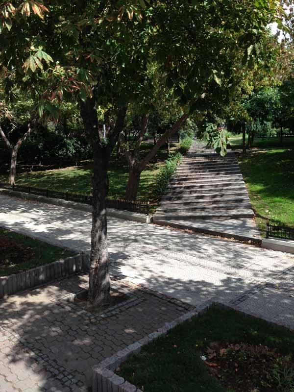 Puistoa.