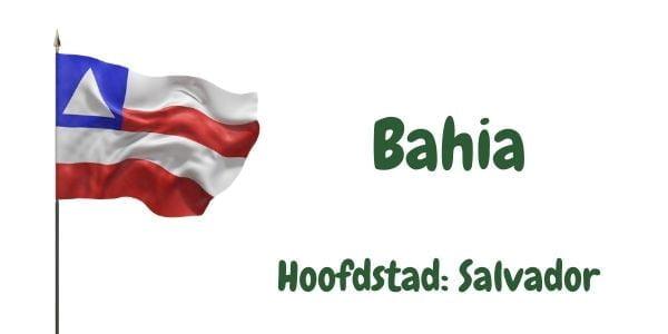 Vlag van de Braziliaanse deelstaat Bahia met als hoofdstad Salvador