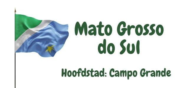 Vlag van de Braziliaanse deelstaat Mato Grosso do Sul met als hoofdstad Campo Grande