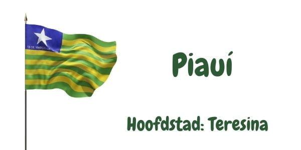 Vlag van de Braziliaanse deelstaat Piauí met als hoofdstad Teresina
