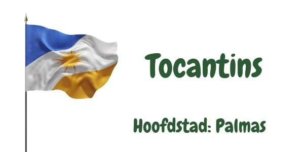 Vlag van de Braziliaanse deelstaat Tocantins met als hoofdstad Palmas