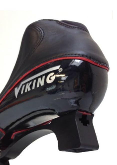 Viking-Nagano-Silver-Compleet-2