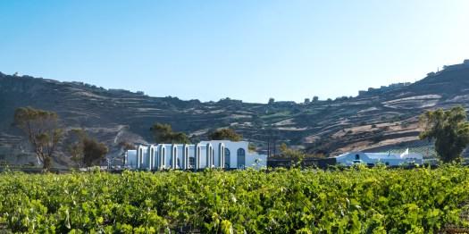 Santorini wijndomein Argyros