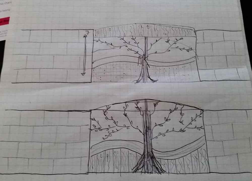 mikeandartdesign-2