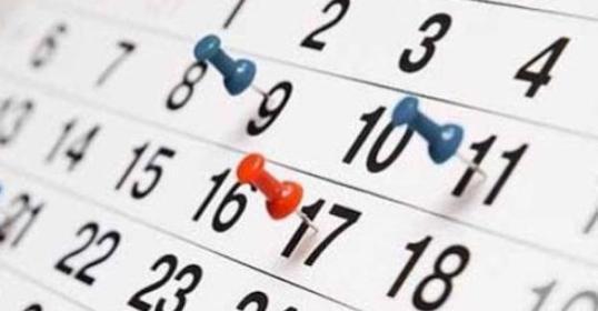 Sesiones de consultoría quincenal o semanal