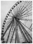 Wheel at Echo Arena