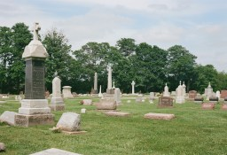 A random cemetery shot that shows incredible clarity and accurate color reproduction.