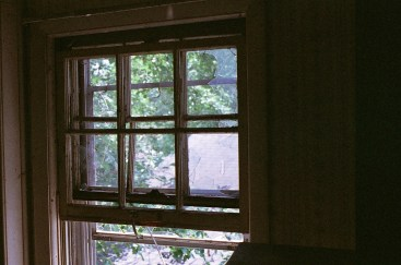Another example of the meter handling the huge contrast between the walls and window, quite well.