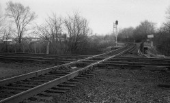 The detail in the barren trees and the railroad tracks is exemplary, showing off the extreme detail the Color-Skopar lens is capable of.