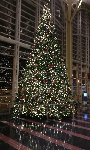 Christmas tree at DCA