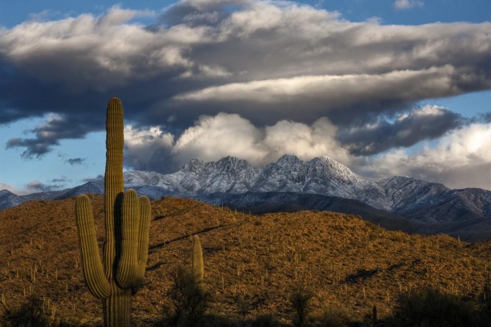 Snow on the Four Peaks Arizona