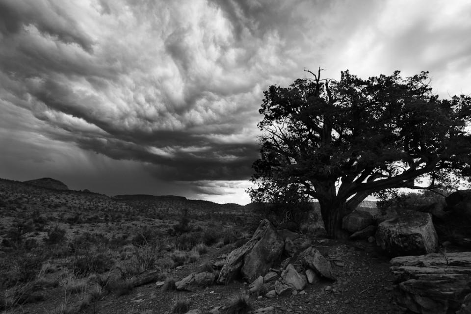 Amidst the Rocks - Monsoon Sedona Arizona