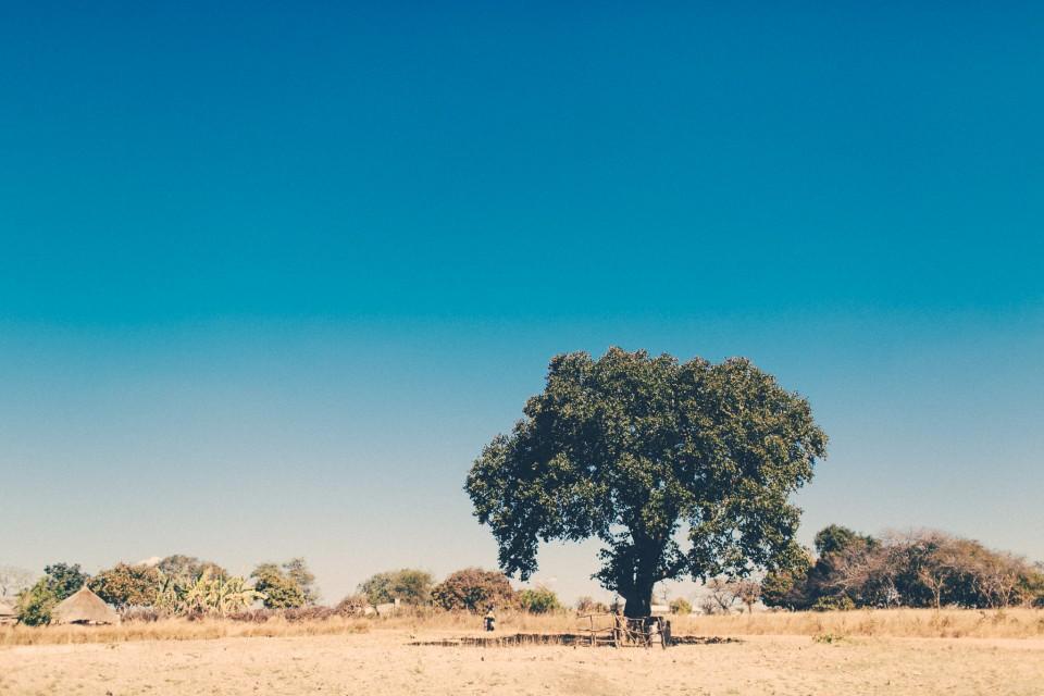 Africa-0811