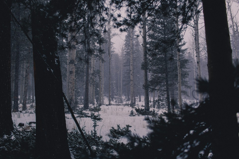 LostDiscoveredPics-182