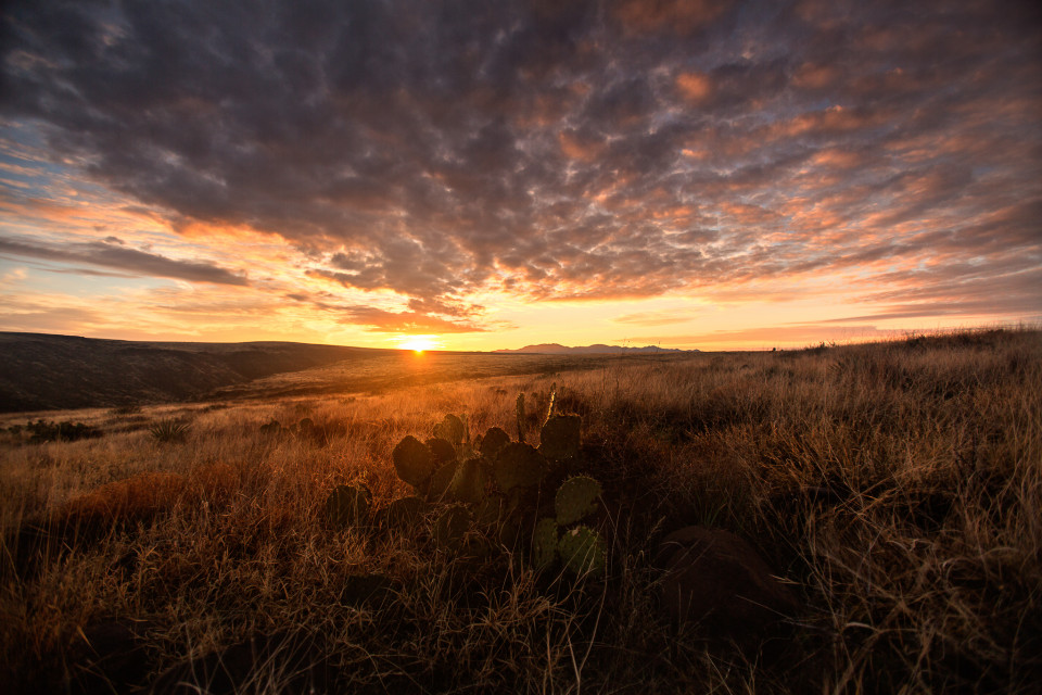 One of the more beautiful places close to Phoenix to shoot sunrise is ironically Sunset Point up on the plateau north of town. Beautiful rolling hills, flowing grass...peppered with cactus here and there.