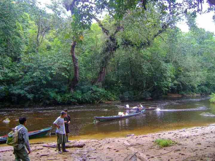 Our long boat is pulled up on the bank of a rainforested stream deep in Kalimantan (Indonesian Borneo) while others pass by.