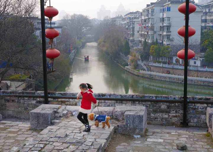 Late in the afternoon, a girl and her dog play along the old course of the Nanjing city wall.