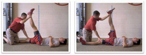 flexor de la cadera muslo estanqueidad