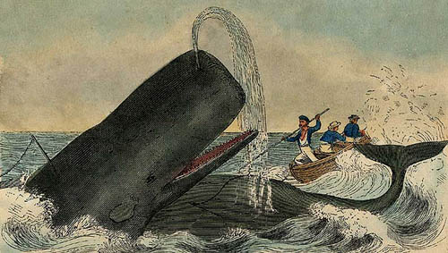 whaling2