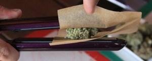 Person - Cannabis Extracts: RSO, CBD, FECO, CO2, Dabs – Confused?