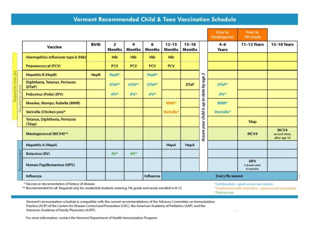 Immunization and Vaccination Schedule Template 02
