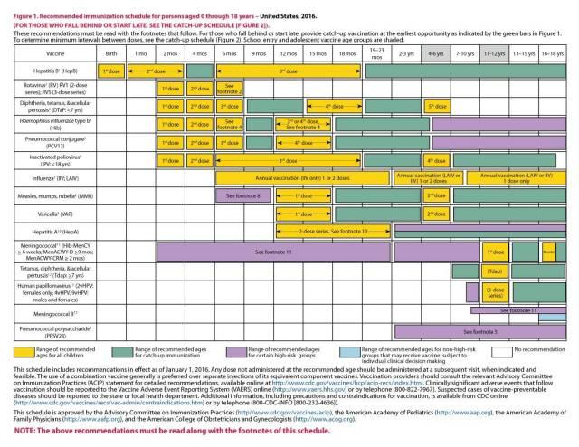 Immunization and Vaccination Schedule Template 03