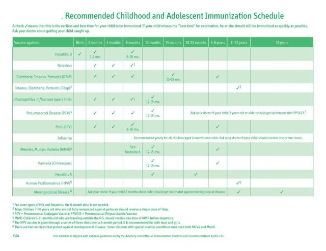 Immunization and Vaccination Schedule Template08