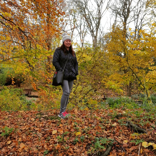 Photos of Hesketh park in autumn