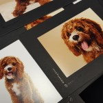 printing and mounts from Mike Turner Photography
